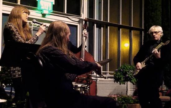 Parisota Hot Club at Como Conservatory January 19 2014